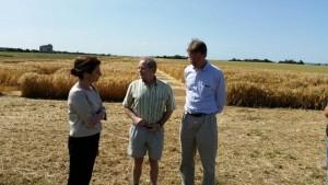 Discutând cu investitorii germani  despre cercetarea aplicata în agricultură